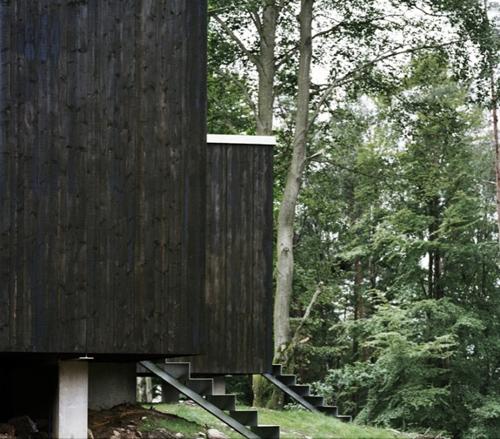 Дом на опушке по проекту Petra Gipp Arkitektur фото 3
