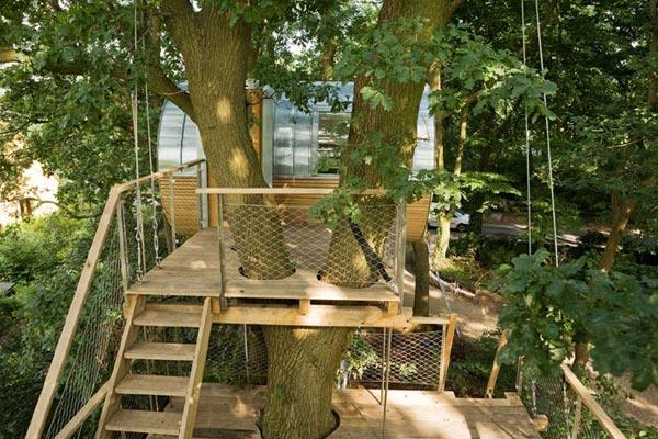 деревянный дом на дереве-4