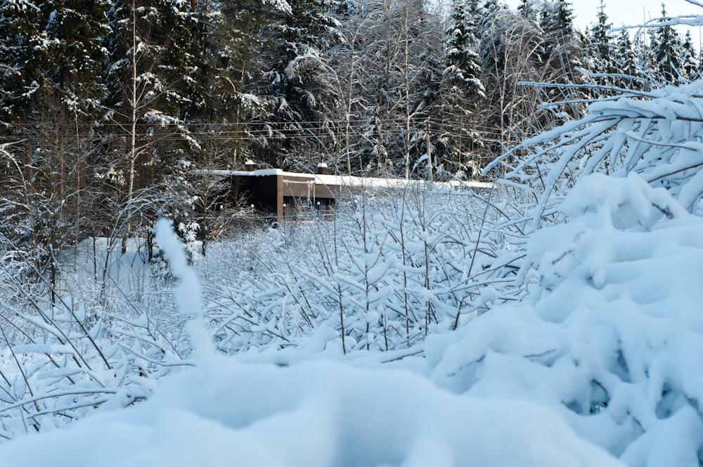 Загородный дом Сергея Наседкина фото 4
