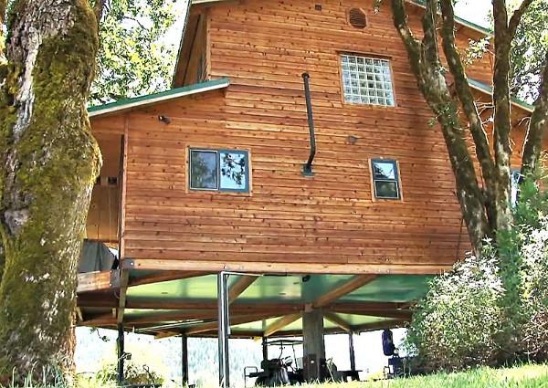 дом на дереве фото 4