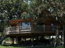 дом на дереве и пансион (8)