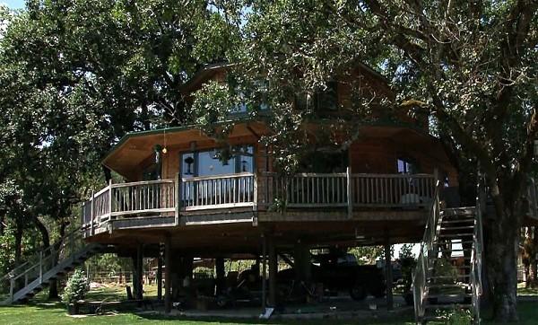 дом на дереве фото 1