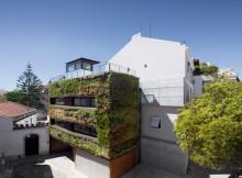 Дом в зеленой «шубе»  (4)