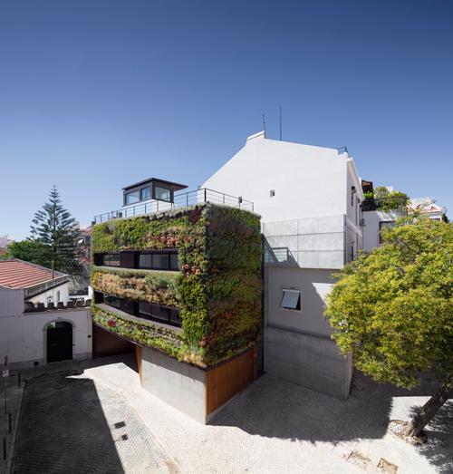частный дом в зеленой фото 1