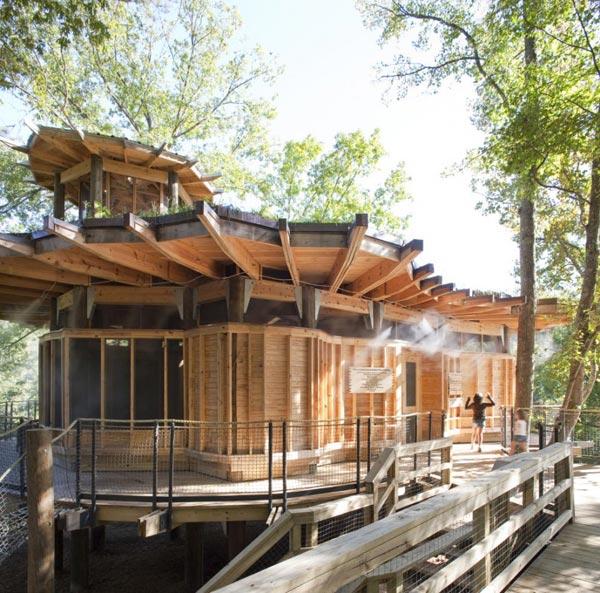 Проект загородного дома у озера