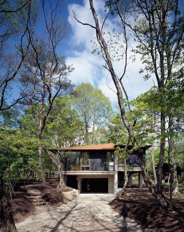 фото особняка с разноуровневыми потолками 3