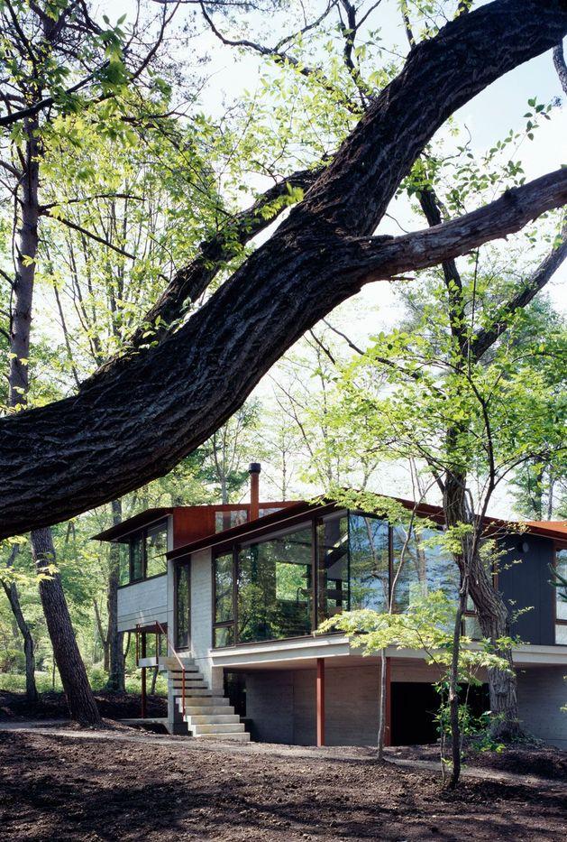 фото особняка с разноуровневыми потолками 2