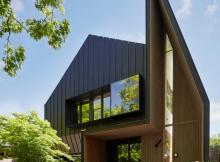 дом черного цвета (1)