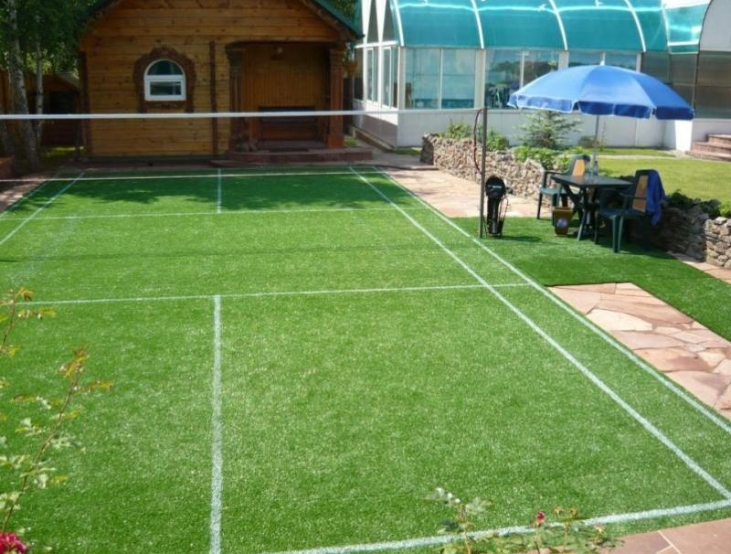 Спортивный газон на даче