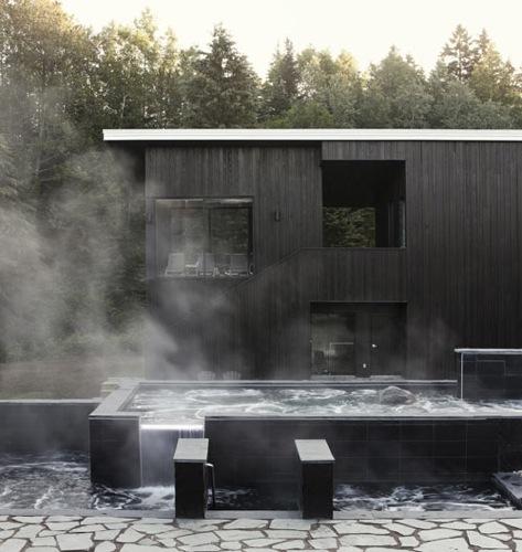 Загородный проект дома