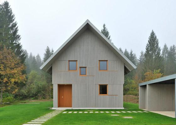Дом в альпийском стиле фото 5