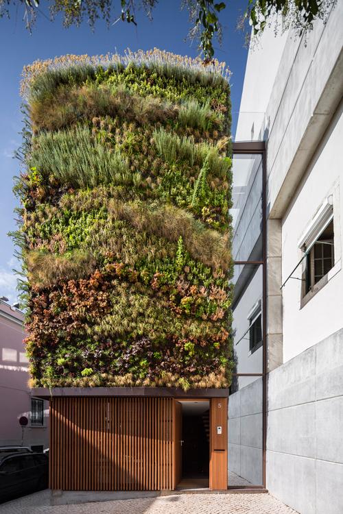 загородный дом в зеленой «шубе» по проекту Rebelo de Andrade