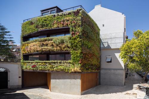проект дома в зеленой «шубе»