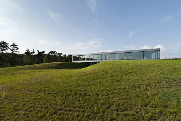 Загородный дом со остекленным фасадом фото 2