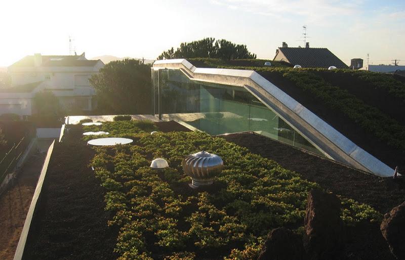 проект загородного биодома