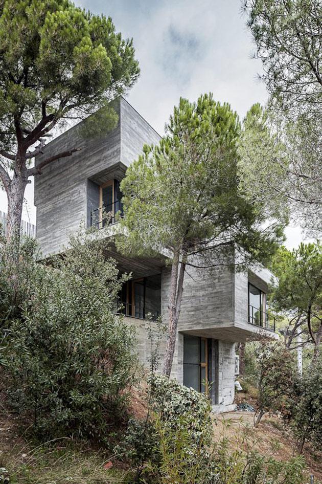 вертикальный дом-2.jpg