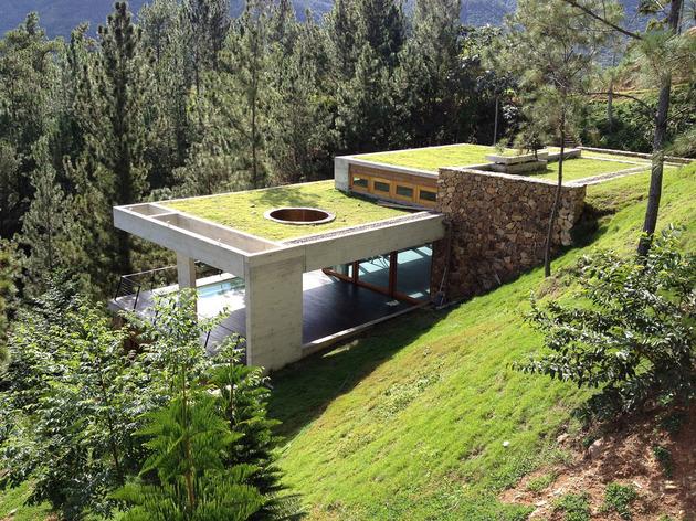 дом на холме-4-profile.jpg