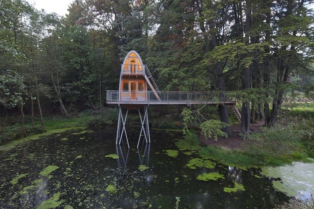 лесной домик фото 3